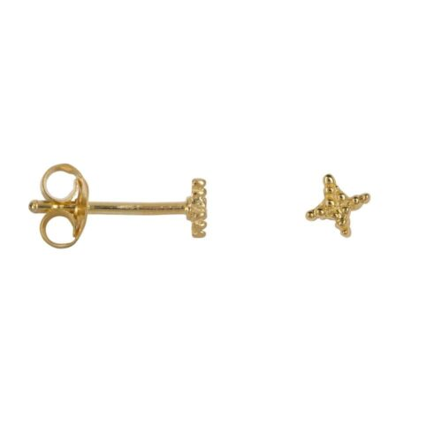 E859 Gold BONJOUR PARIS EARRING Dotted Cross Star Stud Earring Gold Plated 24,95 euro