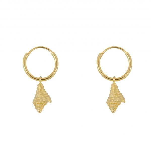 E852 Gold SEA ROCKS EARRING Small Hoop Shell Earring Gold Plated 39,95 euro