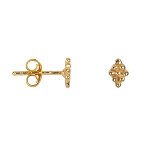 E2038 Gold EARRING Dotted Wieber Stud Earring Gold Plated 24,95 euro